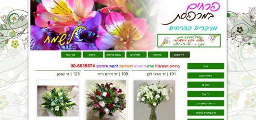 פרחים במרפסת - משלוחי פרחים באשדוד